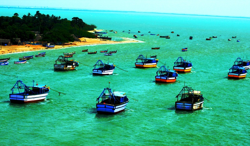 Fleet of boats in Gulf of Munnar