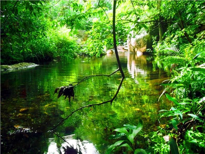 first serene water pool nagalapuram trek