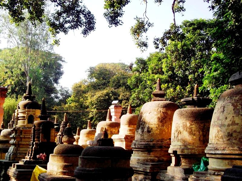 Around the temple premises