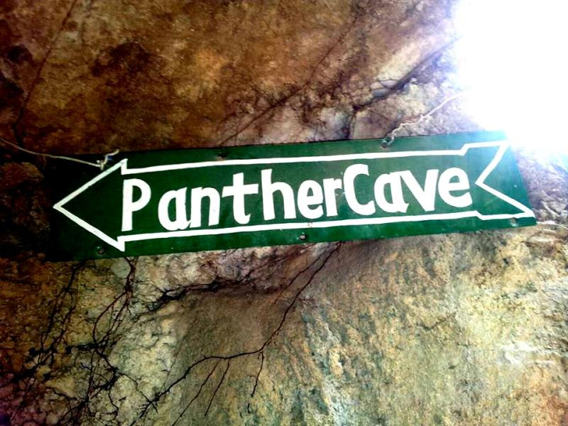 Panther cave