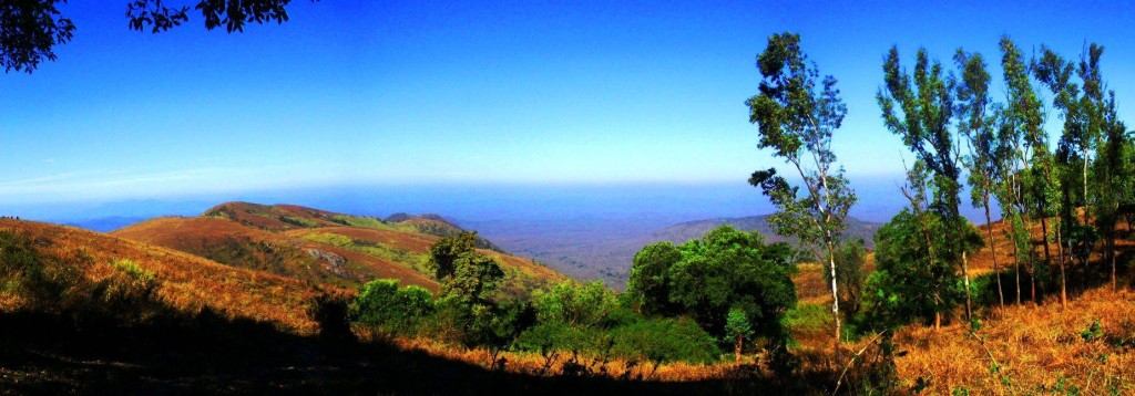 Panoramic view of nilgiris hills