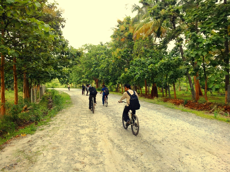 TK falls road cycling