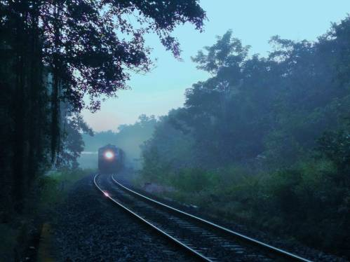 Sakleshpur-route-train-morning