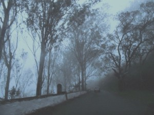 On the way to Nandi Hills