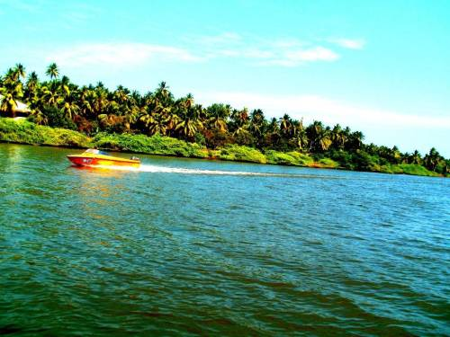 Chunnambar-boat-house-and-back-waters-along-ECR