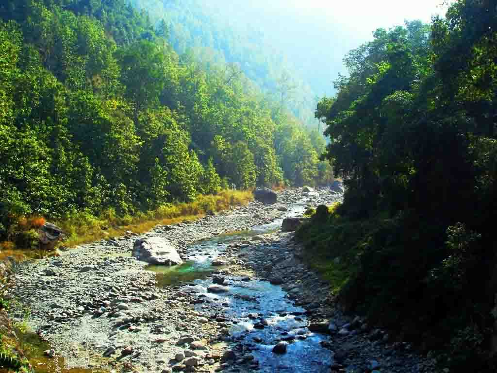 A tributary of river Teesta