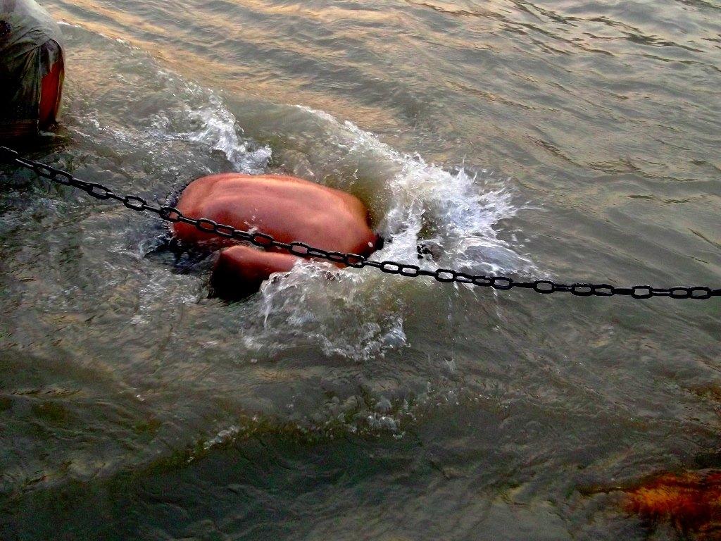 Dip in Ganga in Haridwar