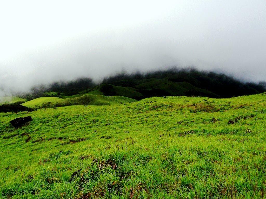 Hovering clouds on Kumara parvatha trek