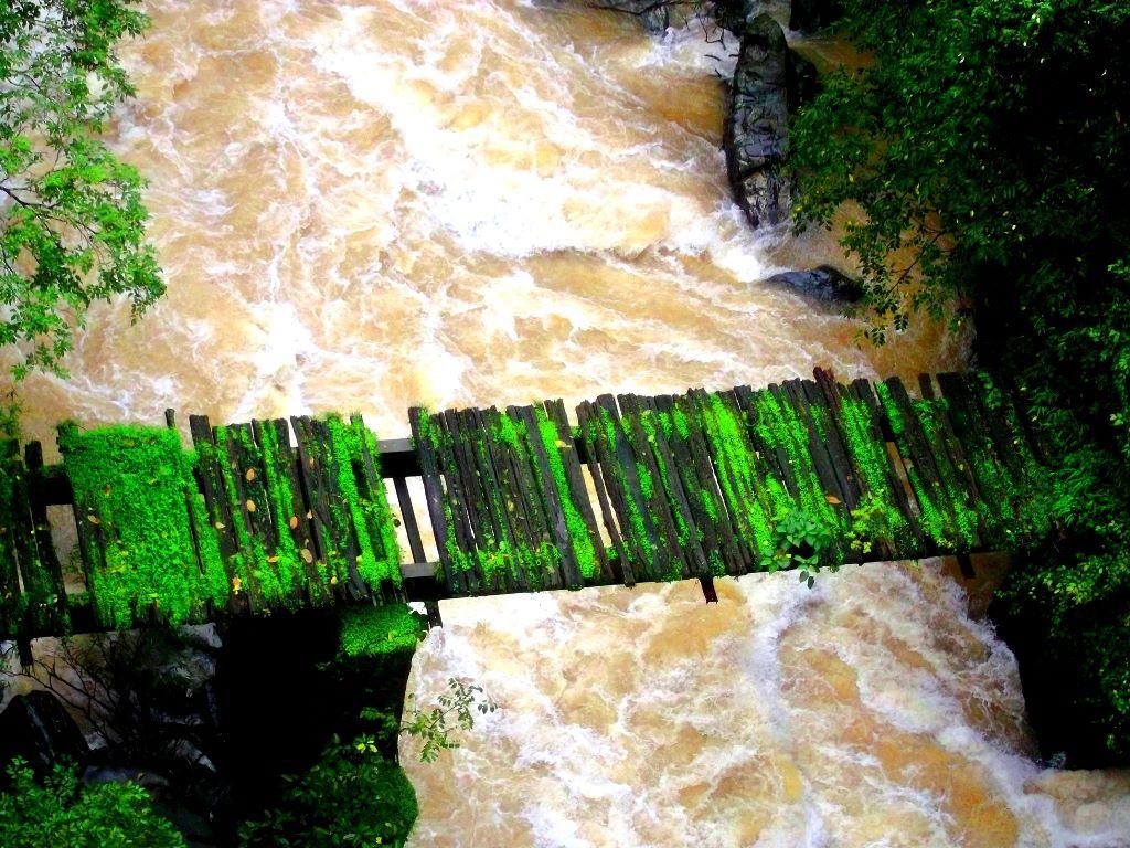 Old railway bridge on sakleshpur trek
