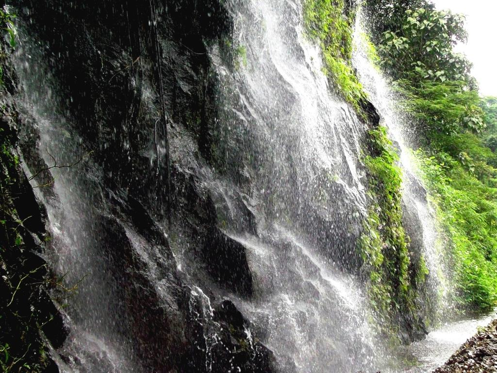 Waterfall beside the railway track on sakleshpur trek