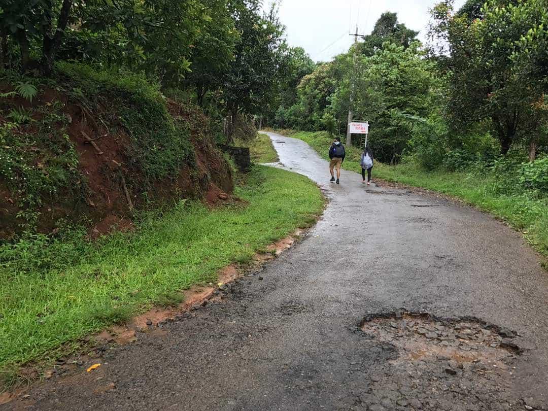 Road from Nalknad palace to the viewpoint on Tadindamol trek