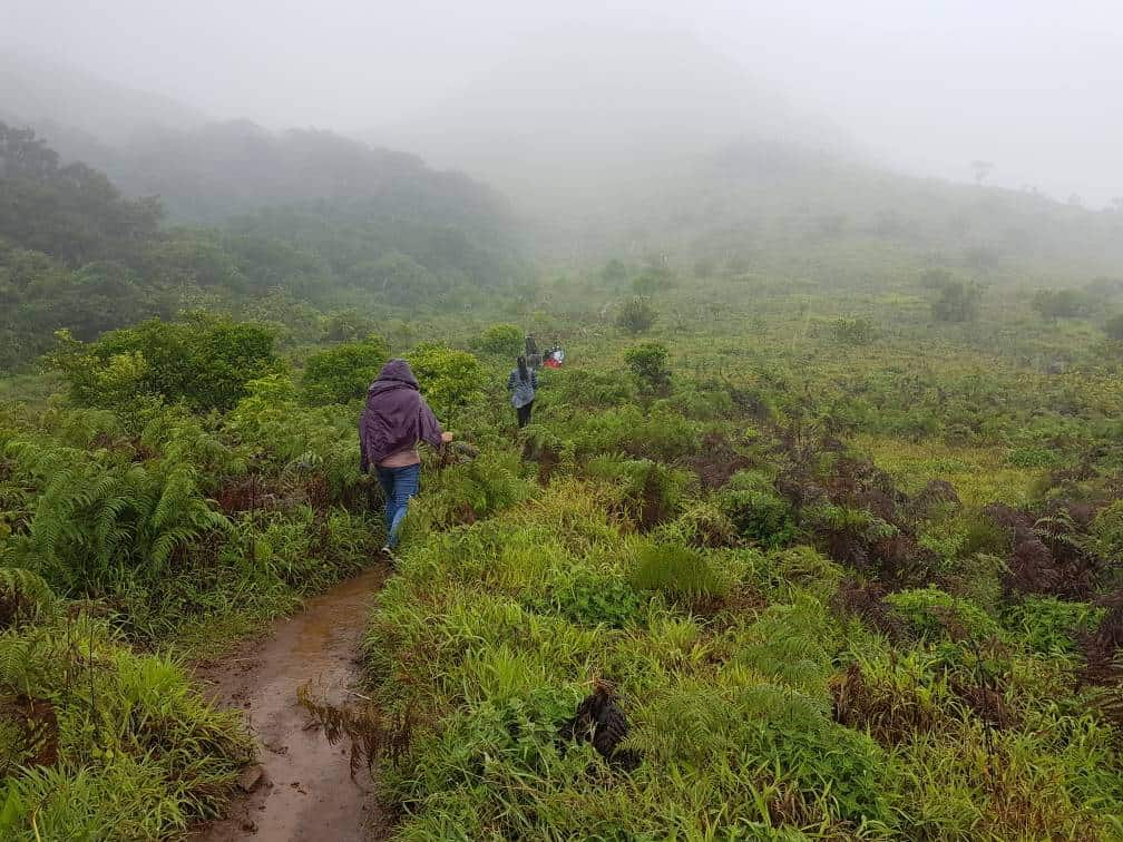 Tadiandamol trek - Steep narrow trail from camping site to the peak in Monsoon