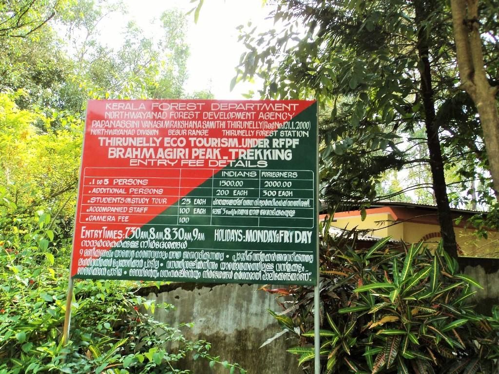 Brahmagiri trek, Kerala, Thirunelli (1)