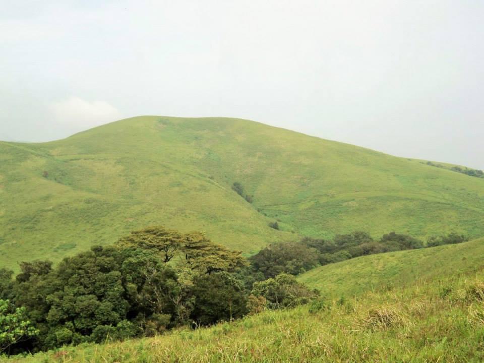 Brahmagiri trek, Kerala, Thirunelli (12)