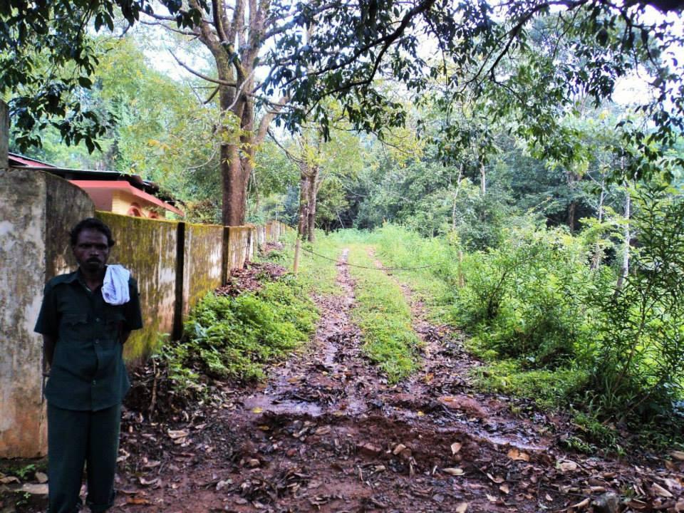 Brahmagiri trek, Kerala, Thirunelli (2)