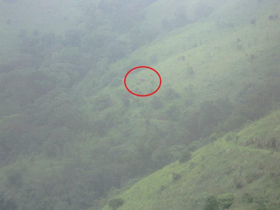 Brahmagiri trek, Kerala, Thirunelli (6)