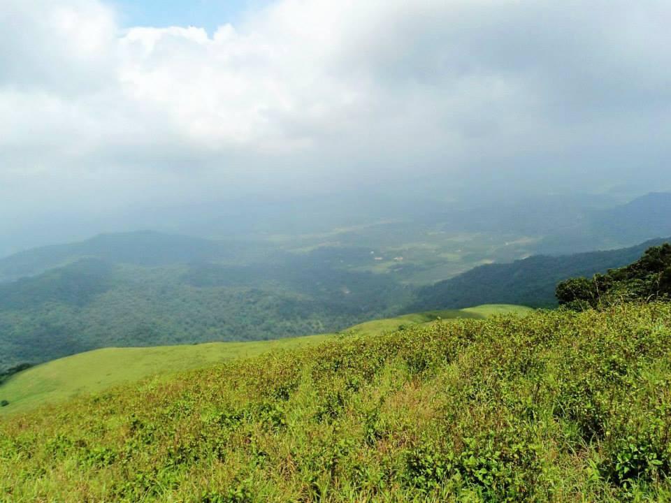 Brahmagiri trek, Kerala, Thirunelli (7)