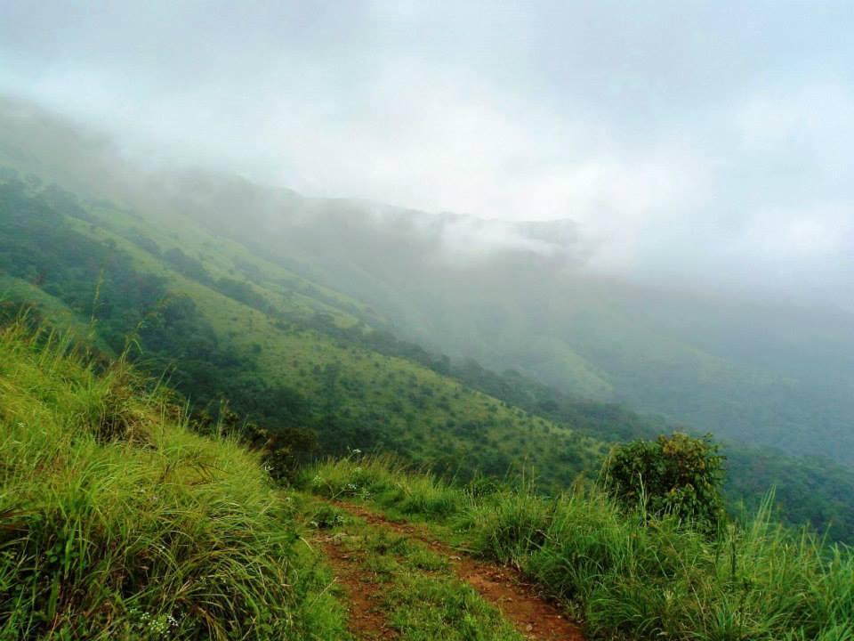 Brahmagiri trek, Kerala, Thirunelli (9)