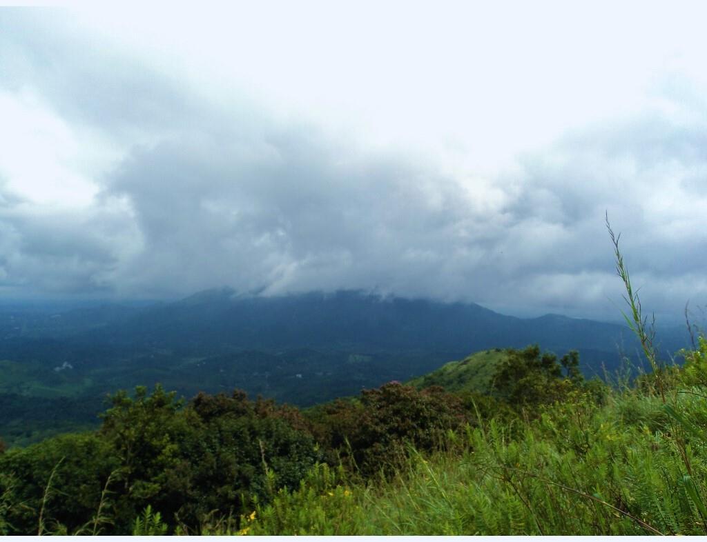 When it rains in Kerala (7)
