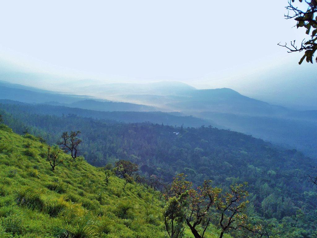 near Bababudangiri trek