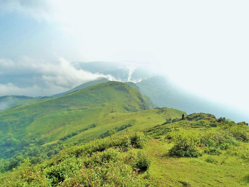 trail from Mullayanagiri towards Bababudangiri