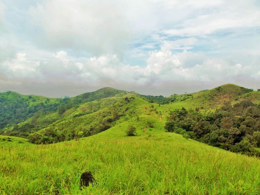 Agumbe trek Narsimha Parvatha