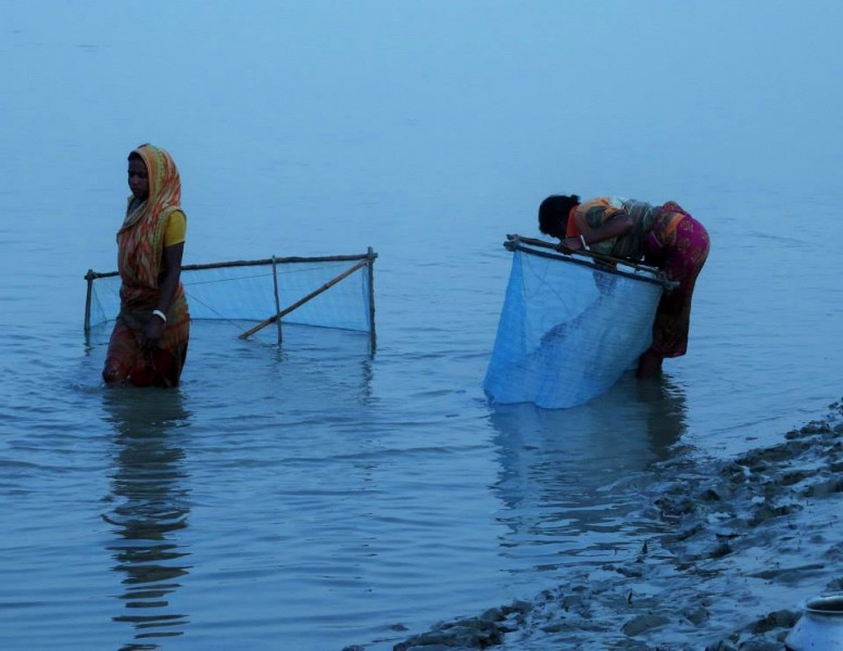 Fishing early morning Sundarbans