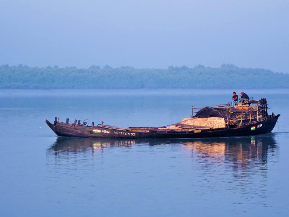 Sundarbans (40)