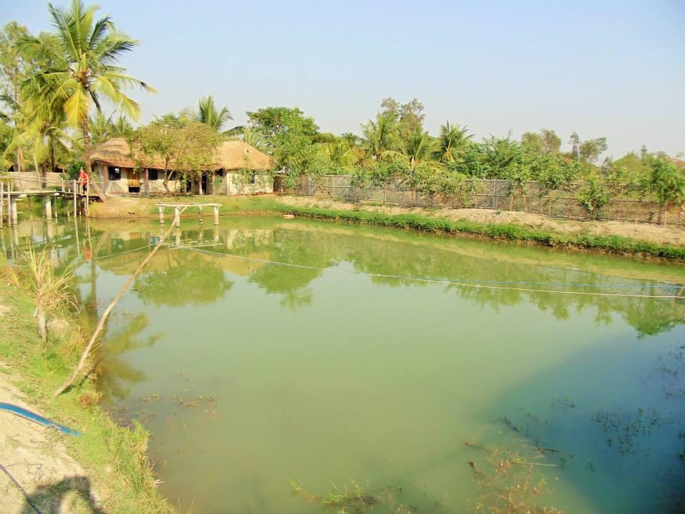 Eco village, Sundarbans