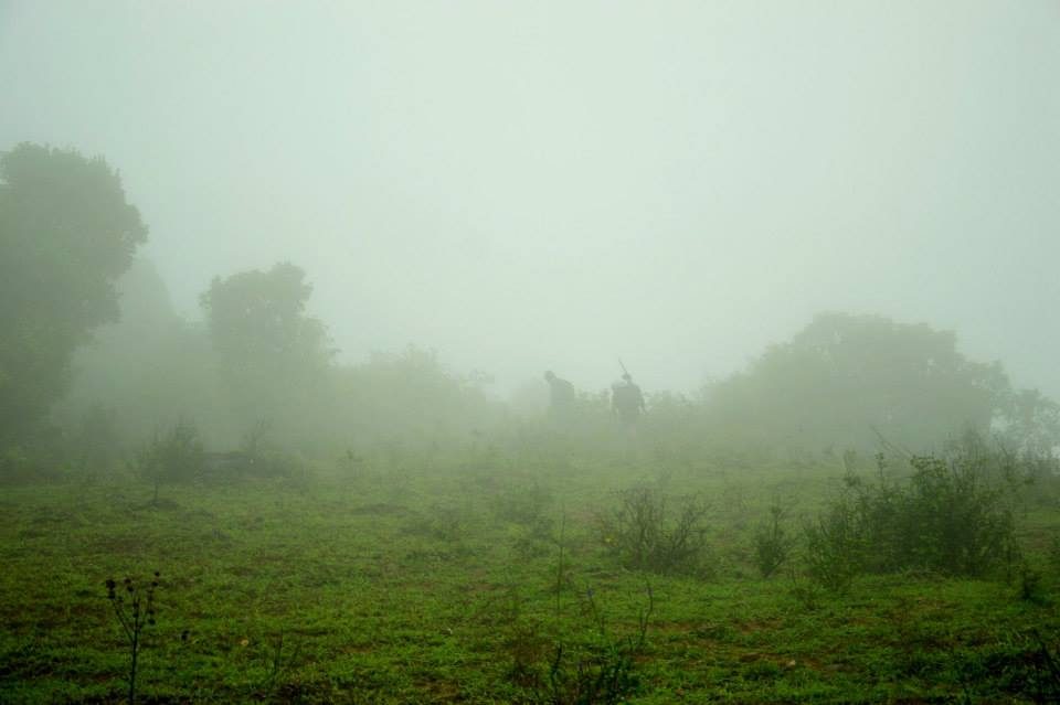 Misty coorg