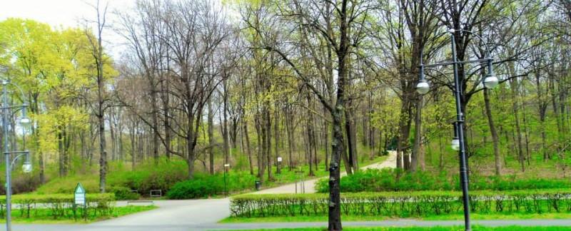 Tiergarten, spring in Berlin