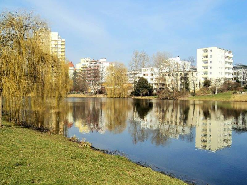lietenzen see park, Berlin in winter (1)