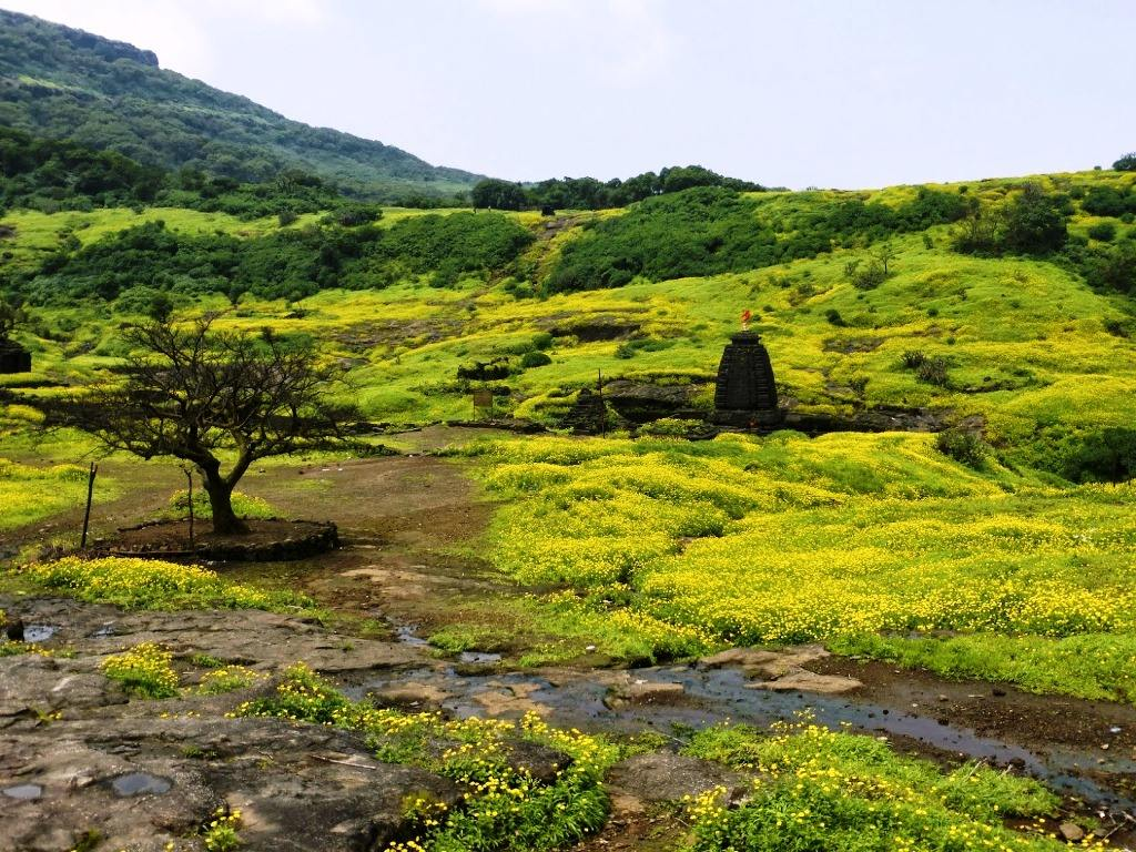 Harishchangragad fort trek