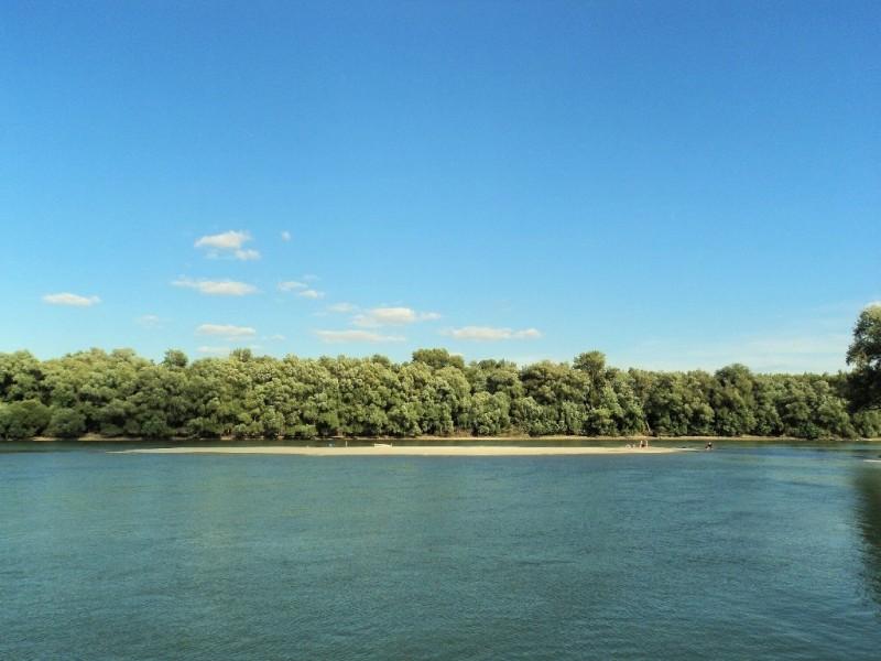 A river island in river Danube
