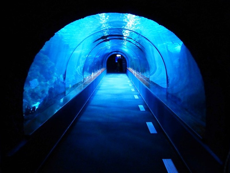 An Underwater tunnel