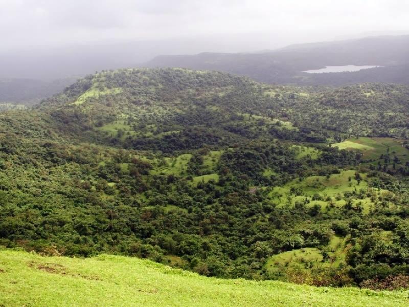 Mandangad view