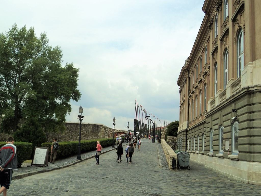 Medieval wall of the buda castle in the picture