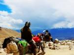 Leh Ladakh bike trip (7)