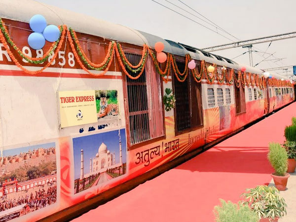 Tiger Express Train
