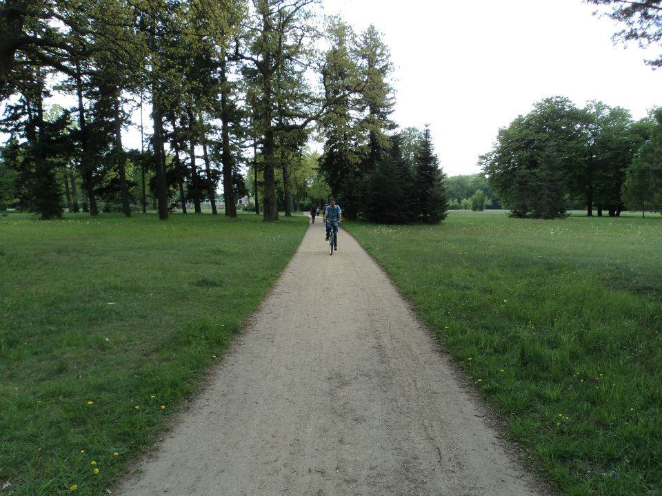 cycling-in-sonssouci-park
