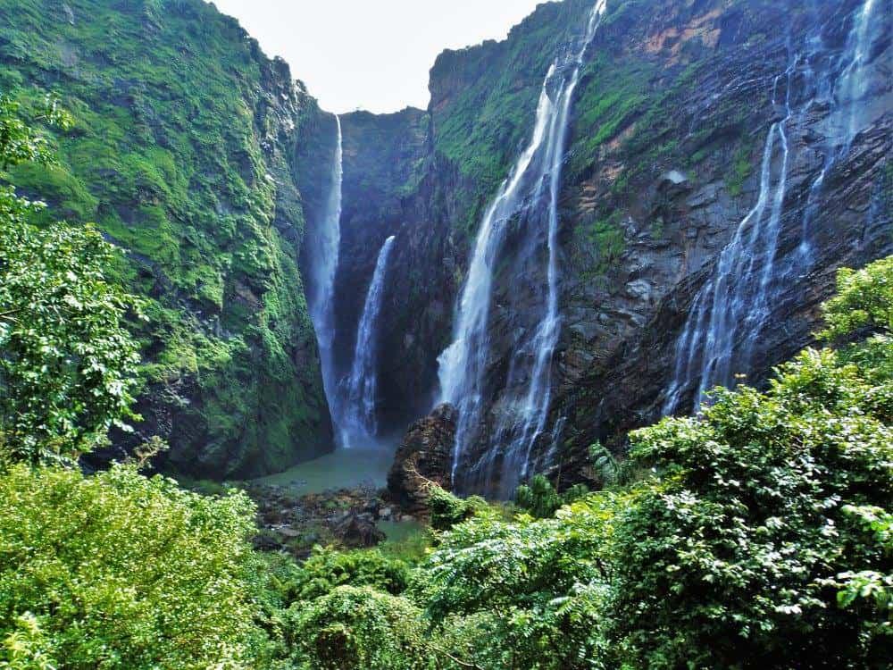 Image result for jog falls