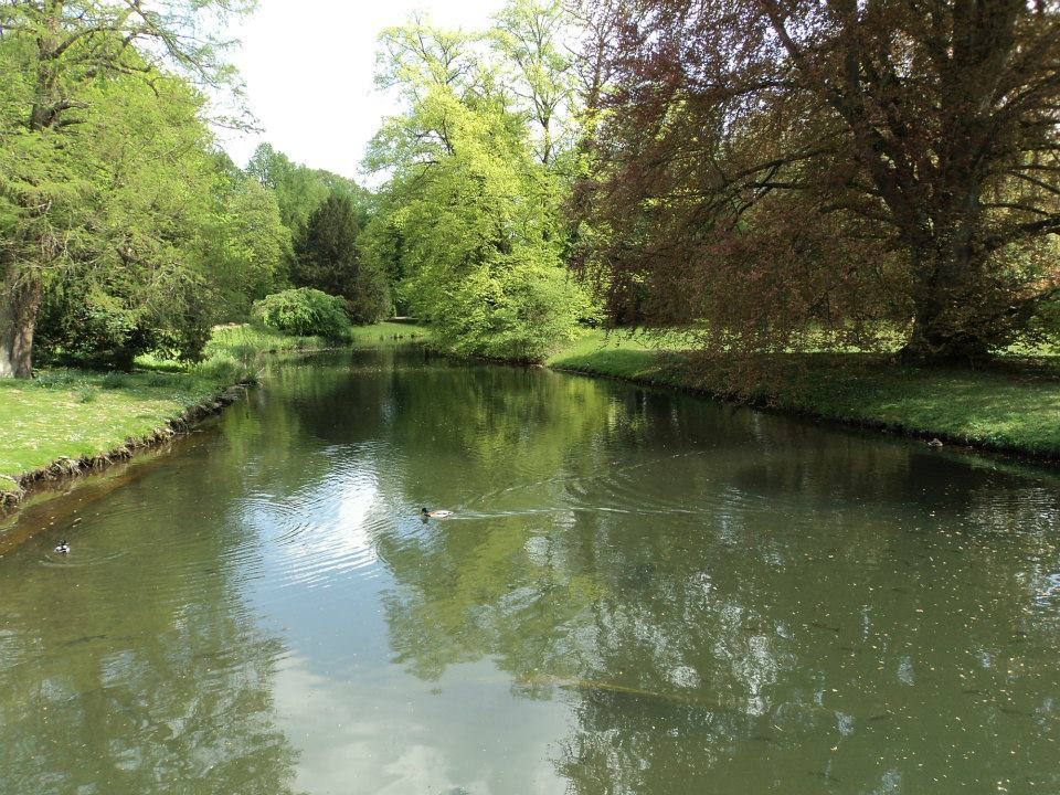 sanssouci-garden-pool