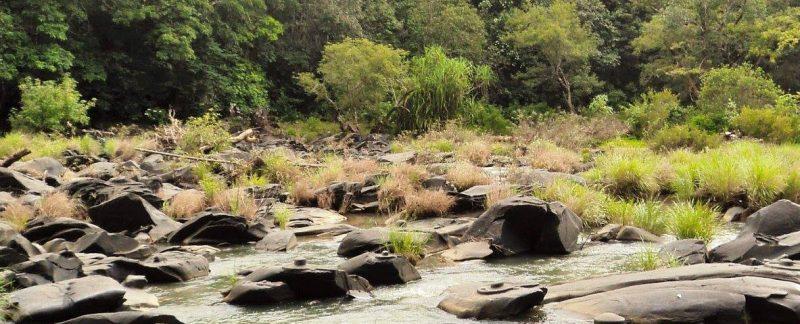 shiva-lingams-in-river-sahasralinga-near-sirsi