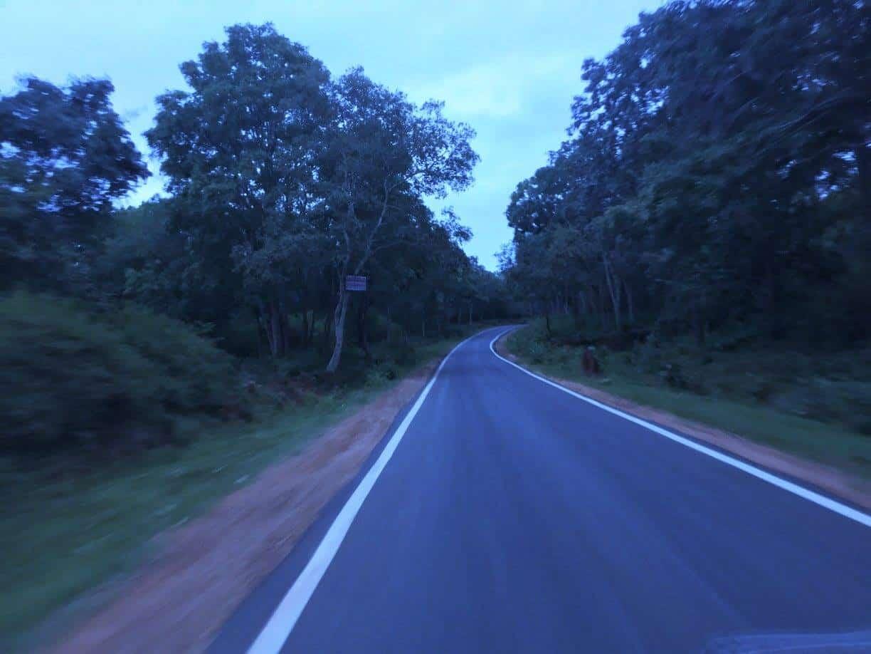inside-br-hills-reserve-forest
