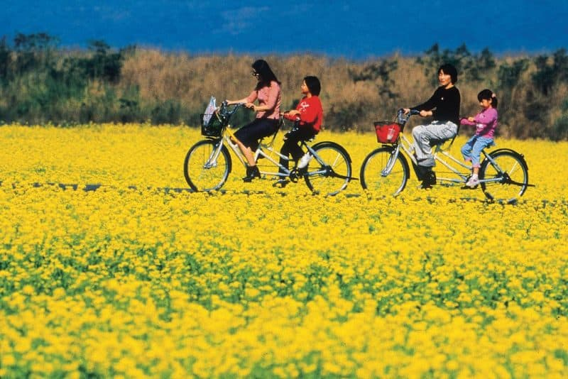cycling-adventures-in-taiwan