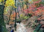 Hiking in Bukhansan National Park (11)