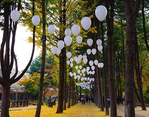 Nami Island or Namseon island near Seoul (3)