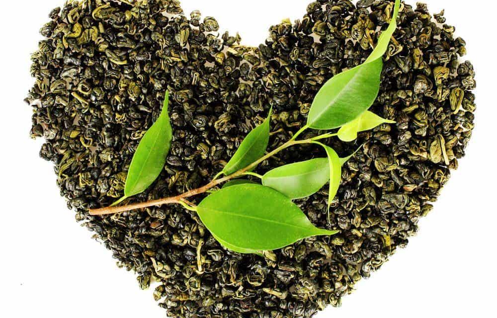 Oolong tea controls cholesterol level