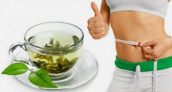 Organic green tea helps in weight loss