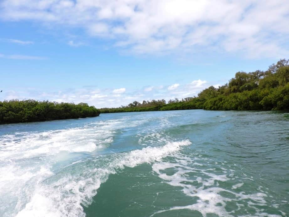 Speed boat through the mangroves to Ilot Mangenie island
